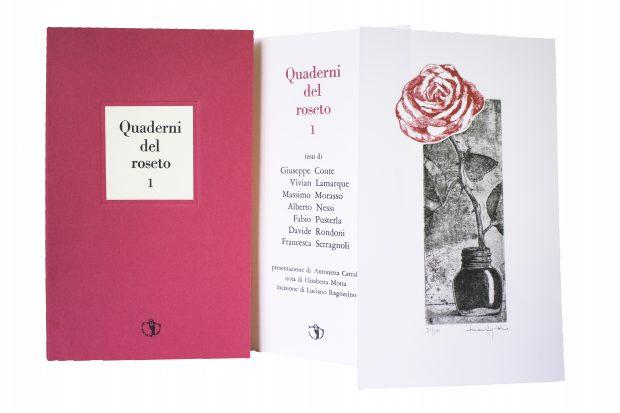 Quaderni del roseto, Il Ragazzo innocuo 2017